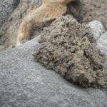 バサモルタルでの失敗は調合と水だけではない。もう1つのこと