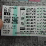 札幌記念G2(2018年8/19予想!)馬券の買い方で勝率が変わった!
