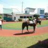 「浦和競馬本日の予想」一番人気馬は12レース中1着が7割です!